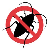 stop roaches